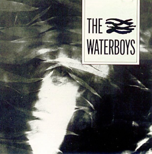the-waterboys-remastered