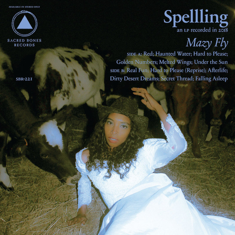 Spellling Mazy Fly review