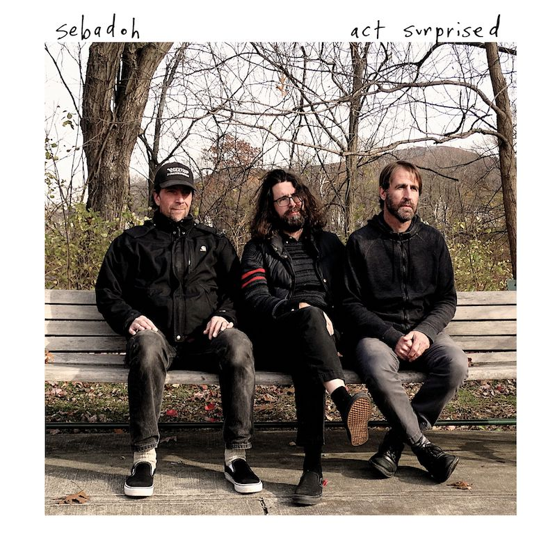Sebadoh new album 2019