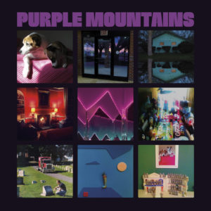 Purple Mountains review