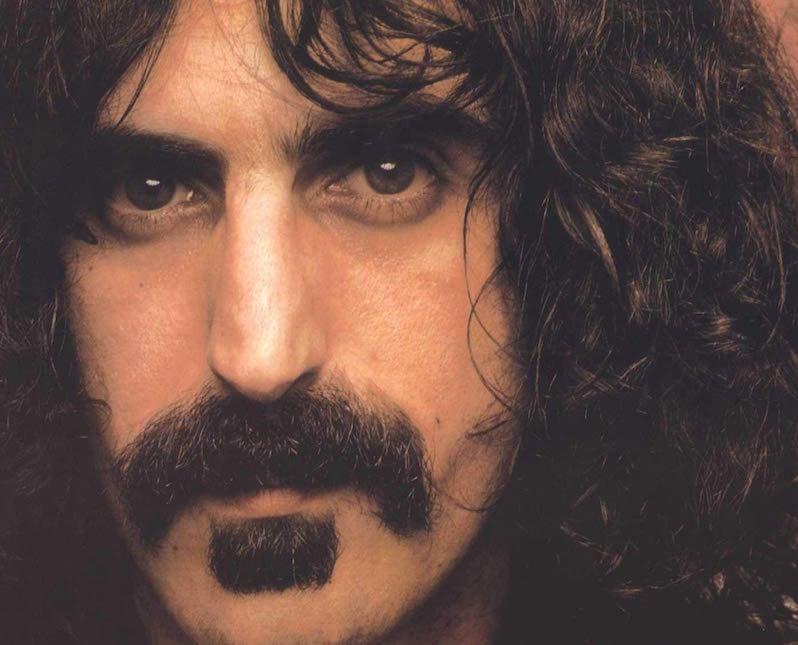Frank Zappa Beginners Guide