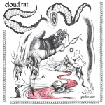 Cloud Rat Pollinator review Album of the Week