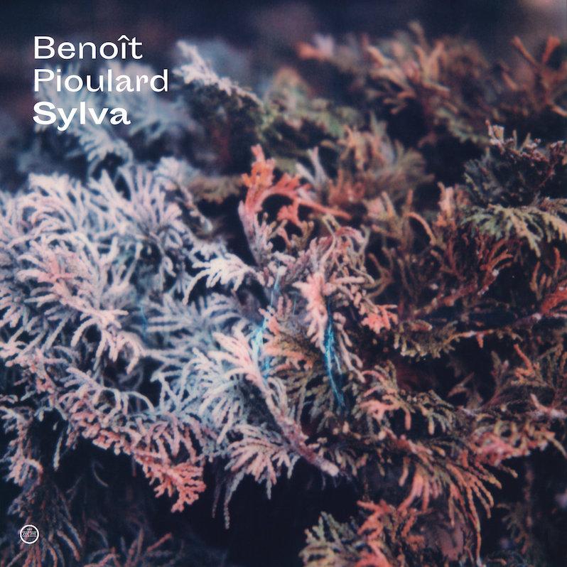 Benoit Pioulard Sylva review