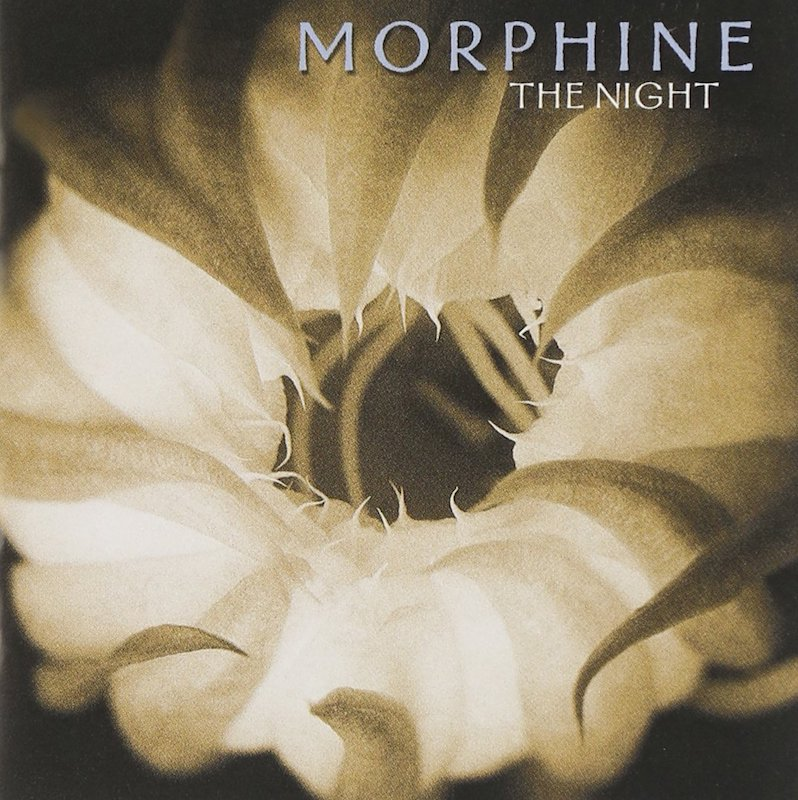 Morphine the Night 20th anniversary hall of fame
