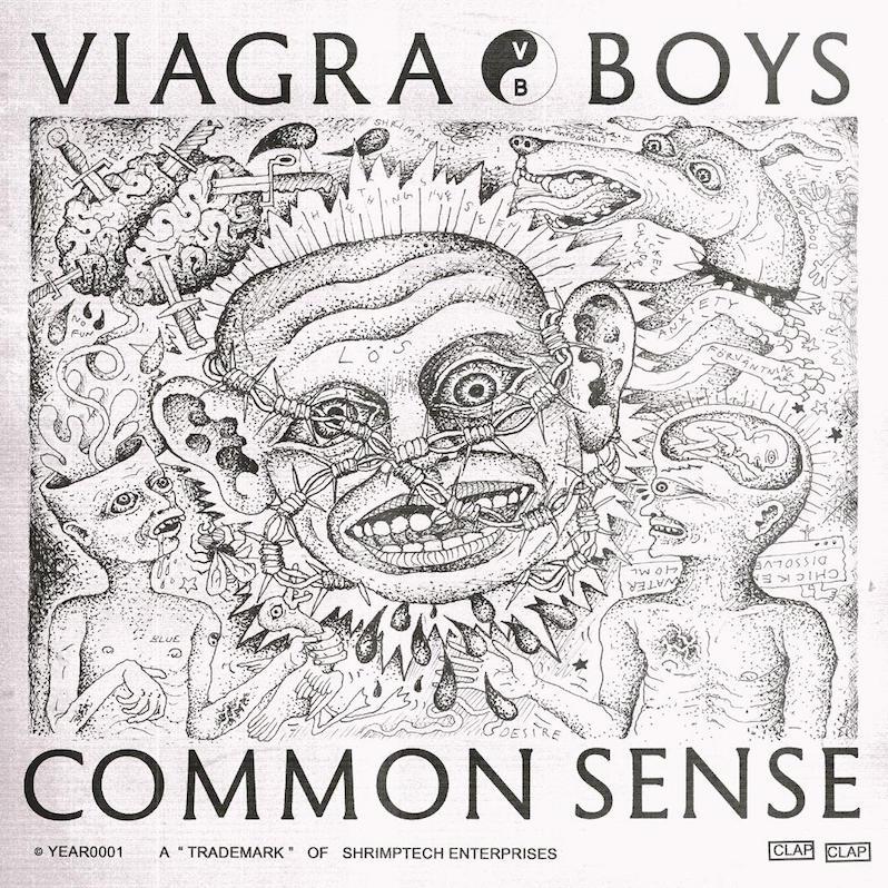 Viagra Boys new EP Common Sense