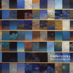 Tindersticks : The Something Rain
